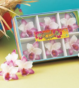 6-pc Orchid Floater Candle Gift Set