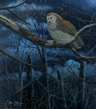 """""""Moonlight Forest"""" ~ Barred Owl Limited Edition Print"""