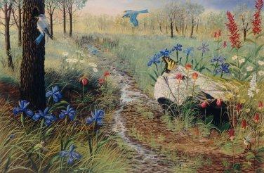 Field of Flowers - Item PP139