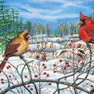 Winter Berry - Cardinals Item PP150