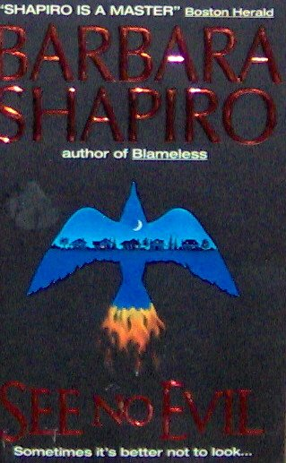 SEE NO EVIL - By Barabara Shapiro - PB/1996 - Suspense