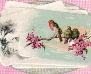 WOOLSON SPICE CO Advertising card, 1895, TC17