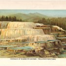 """""""Terrace of Mammoth Geyser—Yellowstone Park""""   Color Plate,  BP3"""
