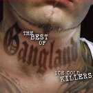 The Best of Gangland: Ice Cold Killers (DVD, 2013, 2-Disc Set)