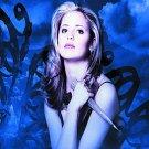 Buffy the Vampire Slayer - Season 1 / FIRST (DVD, 3-Disc Set)