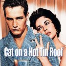 Cat on a Hot Tin Roof (DVD, 2006, Deluxe Edition) ELIZABETH TAYLOR