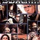 Labyrinth (DVD, 1999, Subtitled Spanish,ENGLISH)