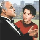 The Freshman (DVD, 1998) MATTHEW BRODERICK,MARLON BRANDO