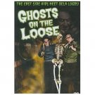 Ghosts on the Loose (DVD, 2001)