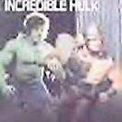 RETURN OF THE INCREDILE HULK (DVD, 2002) LOU FERRIGNO, BILL BIXBY