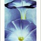 Georgia O'Keeffe Blue Morning Glories 2 Needlepoint Design by Lena Lawson (ok-15)