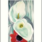 Georgia O'Keeffe Calla Lilies Needlepoint Design by Lena Lawson (ok-16)