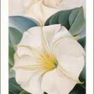Georgia O'Keeffe Jimson Weed 1 Needlepoint Design by Lena Lawson (ok-29)