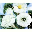Georgia O'Keeffe Jimson Weed 2 Needlepoint Design by Lena Lawson (ok-30)