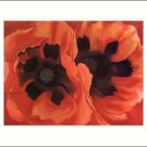 Georgia O'Keeffe Oriental Poppies Needlepoint Design by Lena Lawson (ok-42)