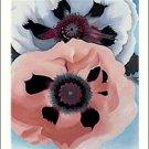Georgia O'Keeffe Poppies Needlepoint Design by Lena Lawson (ok-49)