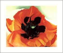 Georgia O'Keeffe Poppy Needlepoint Design by Lena Lawson (ok-50)