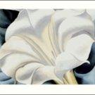 Georgia O'Keeffe White Trumpet Needlepoint Design by Lena Lawson (ok-72)