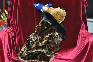 Dog Leopard print coat faux fur Brown Medium M, Petites Unisex Children