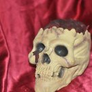QUALITY REALISTIC CARVED SKULL WITH EXPOSED BRAINS
