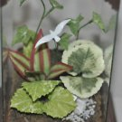 Decorative House Plant White Dove Home Decor Made of Glass & Wood Bird & Square