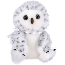 Shining Stars: White and Grey Snowy Owl
