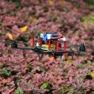 Carbon Fiber Mini 250 Quadcopter Frame Motor Flight Control Board Set HP