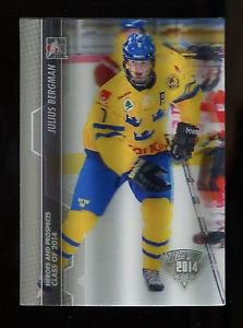 2013-14 ITG Heroes & Prospects 3D SP Class of 2014  #198  Julius Bergman