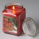 For Every Body Soy Jar Candle Large 17 Oz. Holly Berries Scent Burns up to 190 Hours