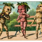 VERY RARE 1919 VEGETABLE VEGGIE CARROT PEOPLE VINTAGE FANTASY POSTCARD ANTHROPOMORPHIC