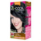 Lolane Z-Cool Hair Color Blissy Natural Hair color Blue Black C2.,