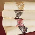 NIP Sferra Graphite  Embroidery on Ivory Standard Pillowcases