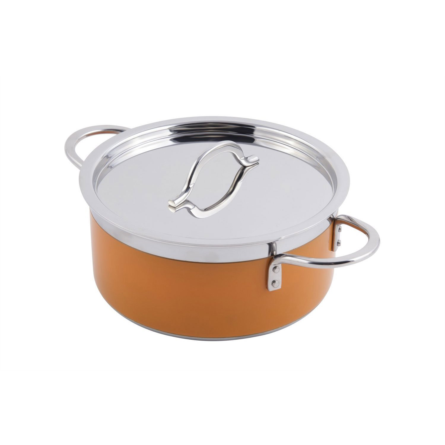 9 3/8 dia. x 4 3/8 H inch Classic Country French Collection 4.3 qt Pot with Cover Orange 1 Ct