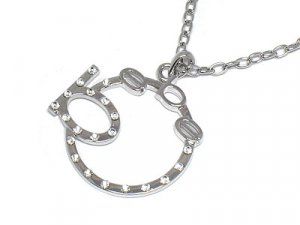 BEBE Crystal circle silver necklace pendant