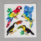 Sandylion Parrot Toucan Stickers Rare Vintage PM316