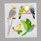 Sandylion Birds Parrot Budgie Stickers Rare Vintage PM557