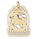 14K GOLD ZODIAC CHARM - CAPRICORN #9461