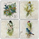 Birds - Stone Coasters - Set of 4 pcs. - 10 x 10 cm - 04