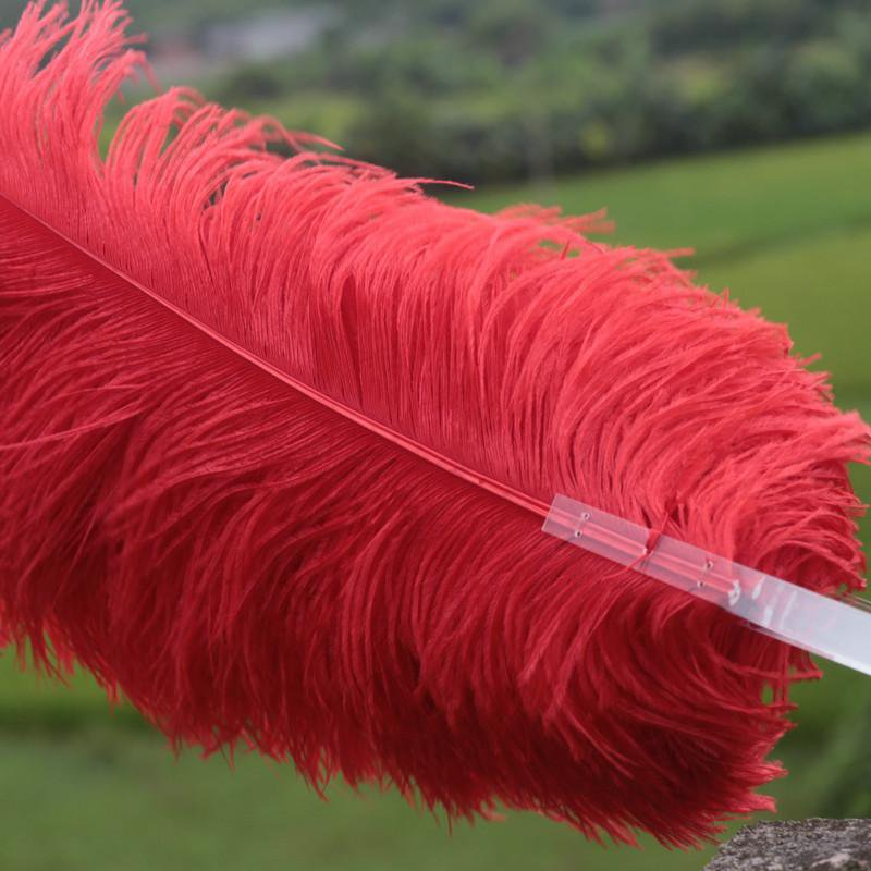 """single layer Red Ostrich Feather Fan Burlesque friend 25""""x45"""""""