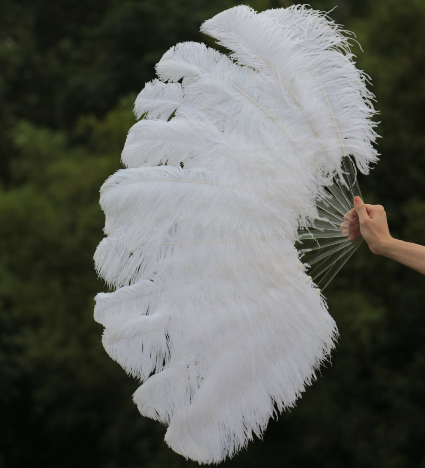 "single layer White Ostrich Feather Fan Burlesque friend 25""x45"""