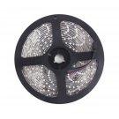 5M 16ft 3528 SMD RGB 300 LEDs Light LED Sticky Strip 12V Lamp Waterproof DF