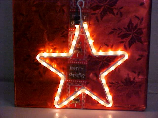 Star Rope Light Sculpture