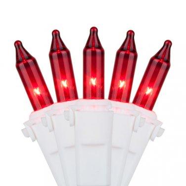 Roman Lights 50 Red Mini Lights