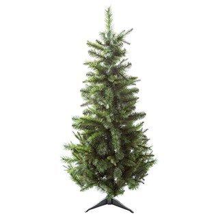 3' European Pine Tree