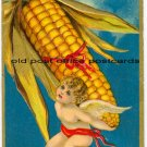 Omaha, NEB-National Corn Expo-Cupid-Large Ear of Corn 1909