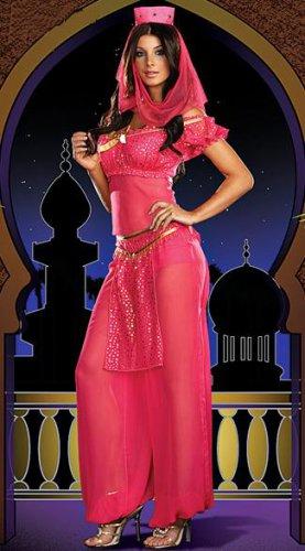Woman Arabian Nights Chiffon Full Sleeve Fancy Dress Aladdin Lamp Costume Pink W8912
