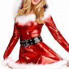 30% Off Beautiful Fancy Dress Ladies Shiny Metallic Christmas Santa Costume W204018