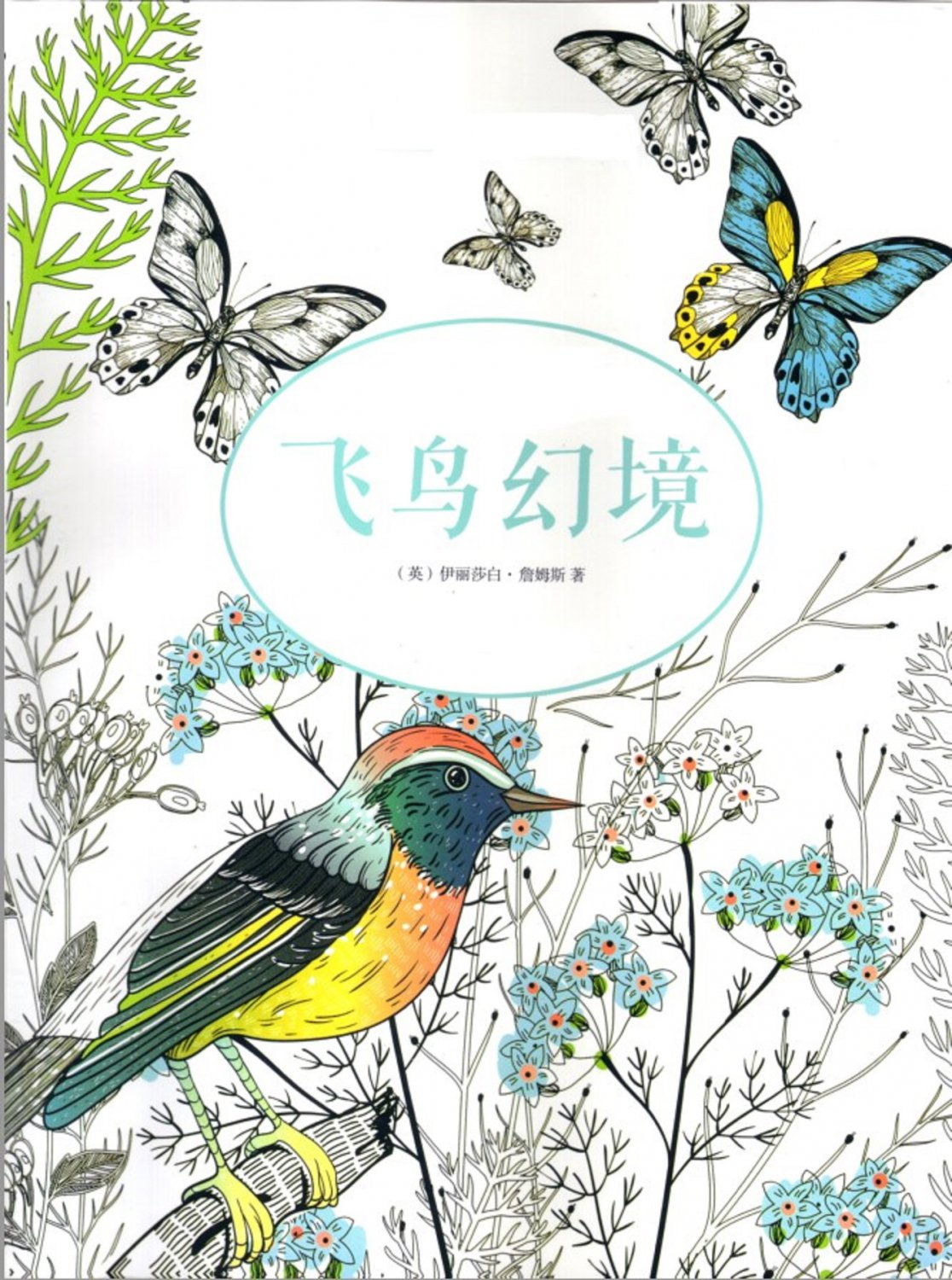Birds Dreamland For Adult Children Chinese Korean Book Creative Digital Copy
