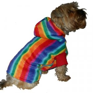 Rainbow Hoody / dog clothes