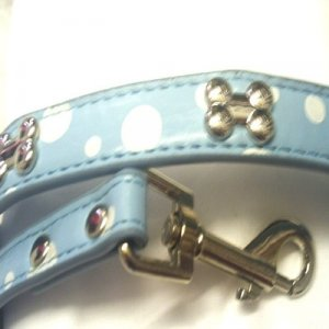 Blue Polka Bone Dog Collar & Lead
